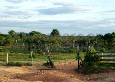 Savanne in Roraima, Brasilien / Savanna in Roraima, Brazil