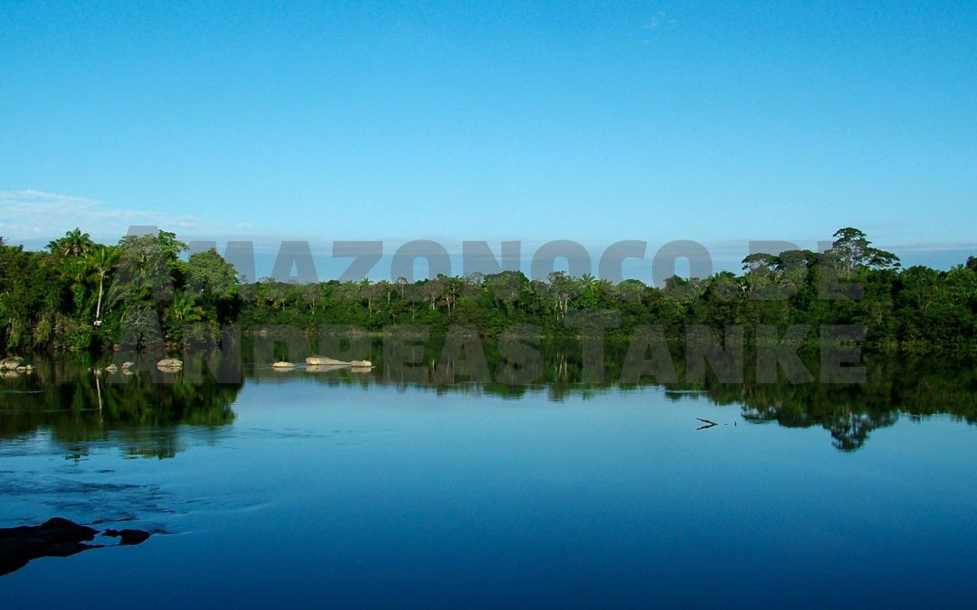 In the North of Brazil – Search for new plecos