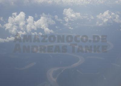 Amazonischer Dschungel
