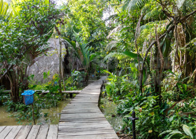 Paths in the Ecolodge