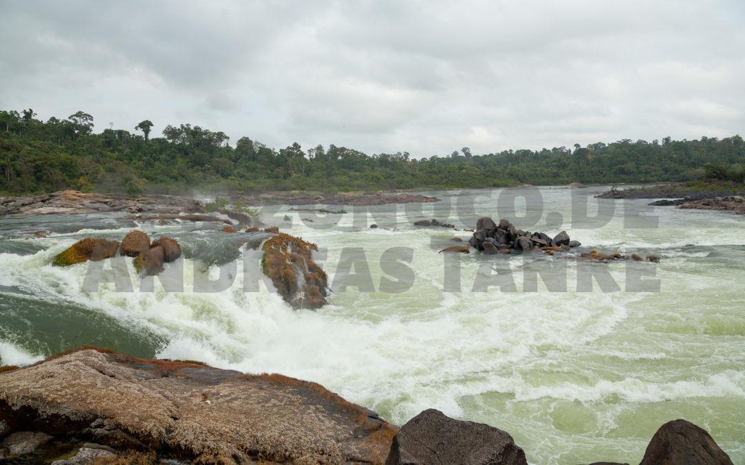 Biotopes of plecos at Rio Xingu