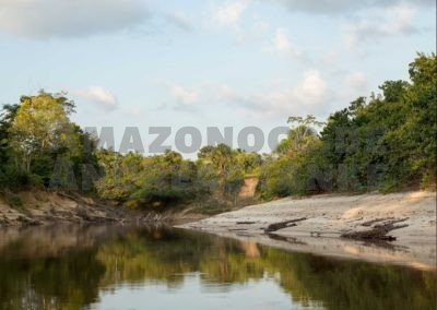 Perú – Expeditions in the amazonian lowlands